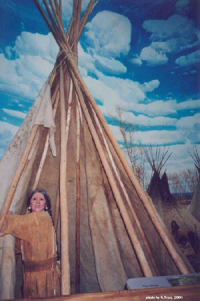 Plains First Nations The Tipi Also Tepee Or Teepee